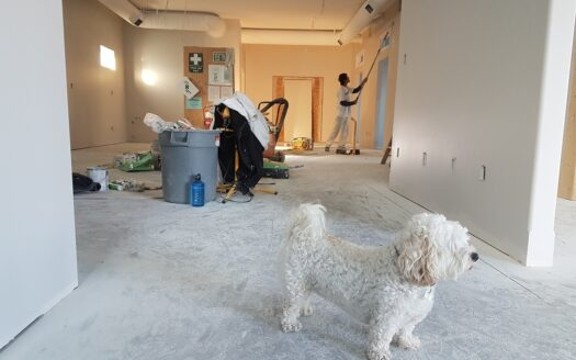 Painter performing work that may lead to the filing of a Mechanic's Lien